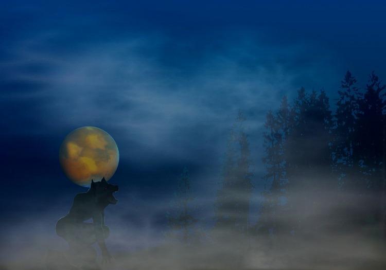 werewolf-620743_1280