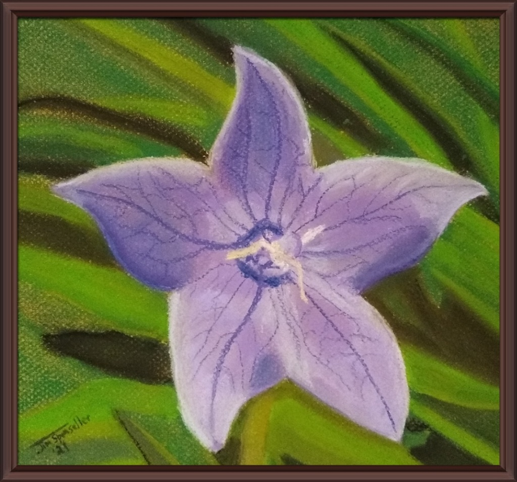 Pastel Painting of Violet Star